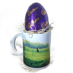 Cadbury Dairy Milk Egg sits neatly inside a mug