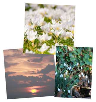 Bereavement Cards